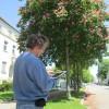 Bild 3 GIS Baum-App Erfassung